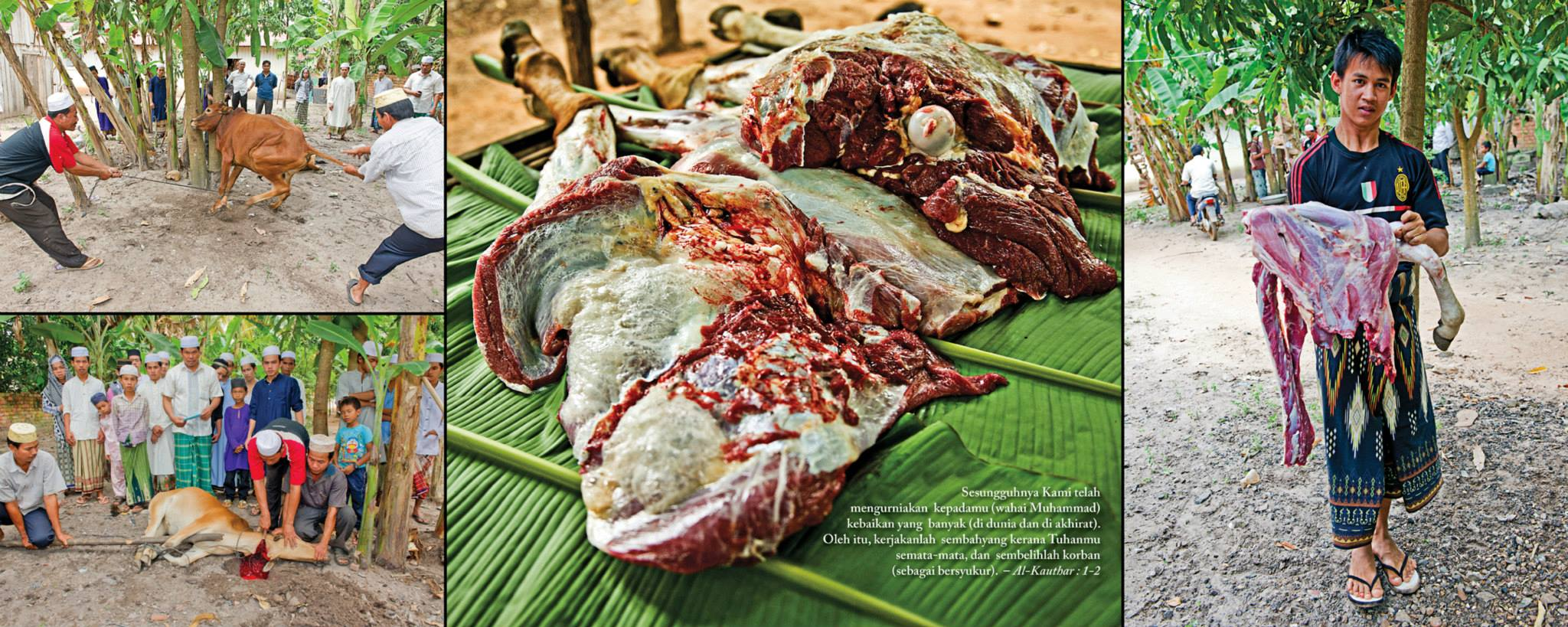 suasana eidul adha di kemboja